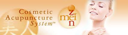 mei zen log